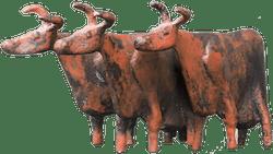 Bronzefigur Kühe von Hermann Schwahn