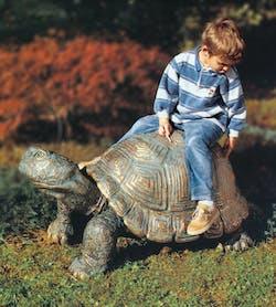 Bronzefigur Schildkröte von Michael Brettschneider