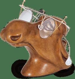 Bronzefigur Elchkuh von Jagna Weber