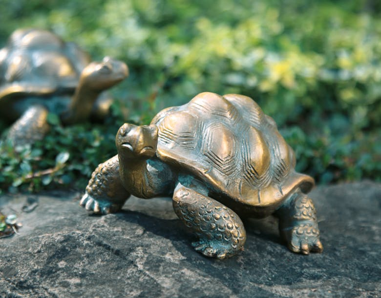 Bronzefigur Schildkröte von Atelier Strassacker